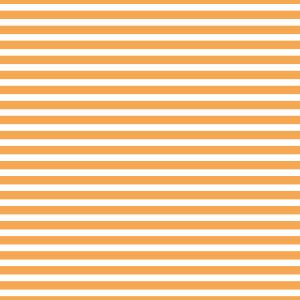 AATH - Horizontal Stripes Orange