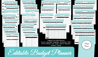 Printable Budget Planner/Finance Binder Update