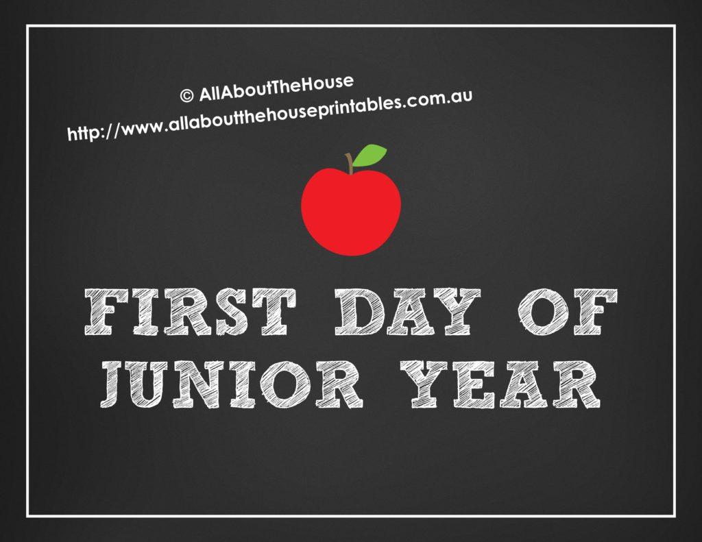 Grade Signs School chalkboard apple school photo prop first last day-min