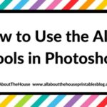 How to use the align tools in Photoshop (step by step tutorial)