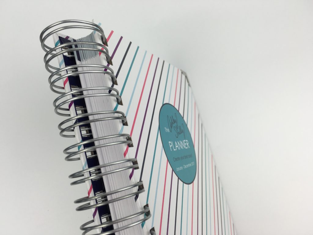 durable planner ashley shelly review colorful horizontal 2 page weekly spread checklist hourly laminated tabs haul pros and cons cheaper alternative to ec