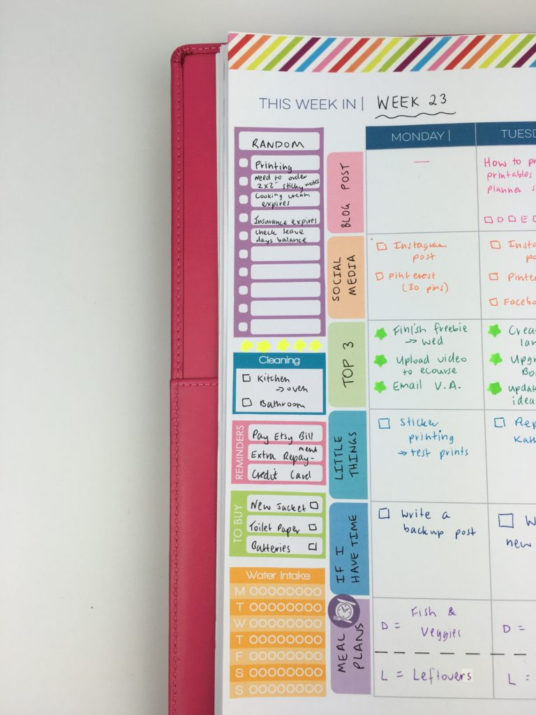 limelife planners review layout C how to use the sidebar of your planner color coding categorised checklist planning tips inspiration