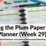 Weekly planning using the Plum Paper Me Planner (52 Planners in 52 Weeks – Week 29)