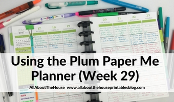 Weekly planning using the Plum Paper Me Planner (52 Planners in 52 Weeks – Week 29)