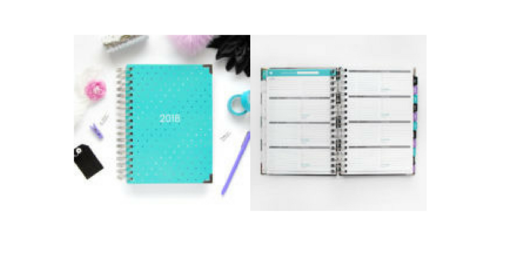 Ashley Shelly Planner, horizontal weekly planner layout