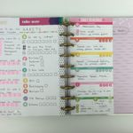 Using MAMBI inserts and Carpe Diem planner stickers for a colorful weekly spread!