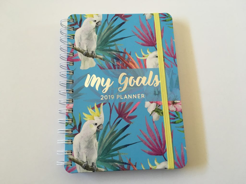 otto my goals weekly planner review a5 size horizontal colorful cheaper alternative to erin condren recollections australia officeworks video