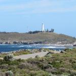 Day Trip to Rottnest Island from Perth, Western Australia