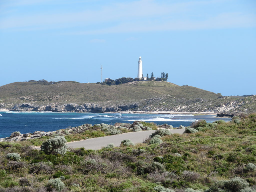 rottnest island day trip from perth itinerary photo spots things to see and do