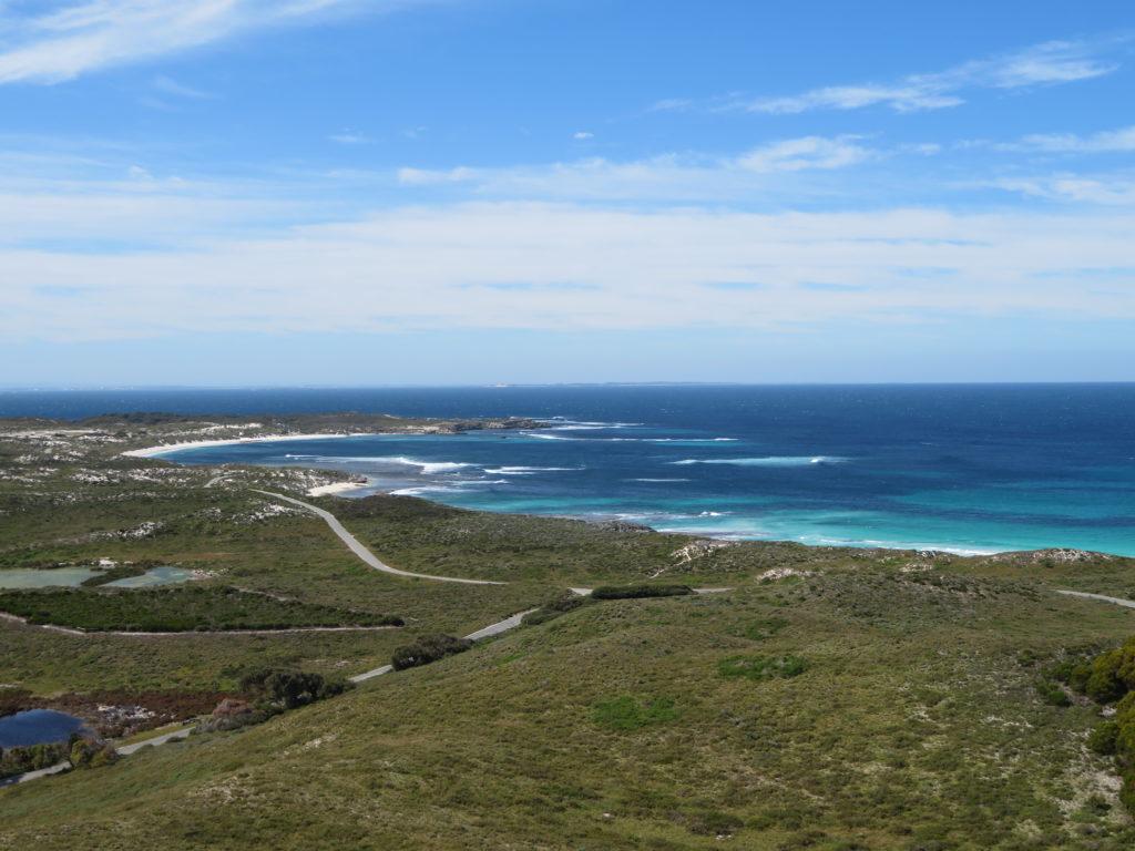 rottnest island western australia day trip from perth australias most beautiful beaches