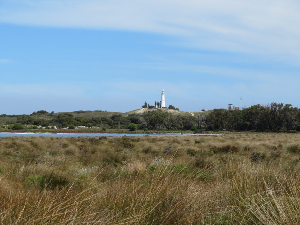 rottnest island day trip from perth itinerary lighthouse