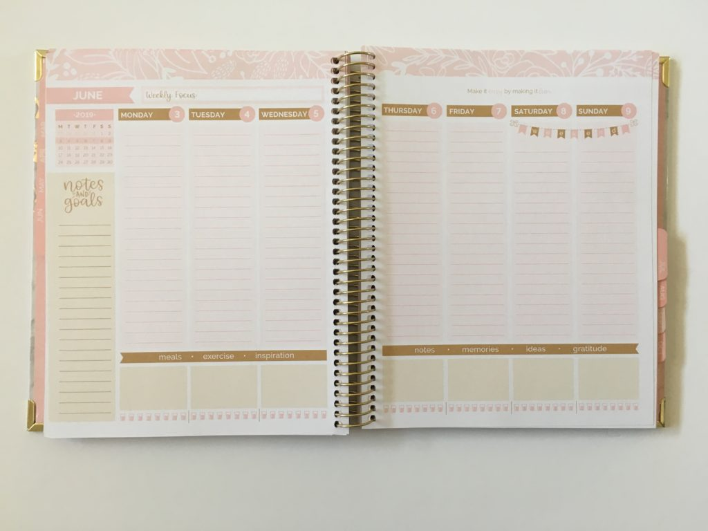 bloom vision planner weekly review pros and cons video vertical lined monday start notes meal planning hydrate pink