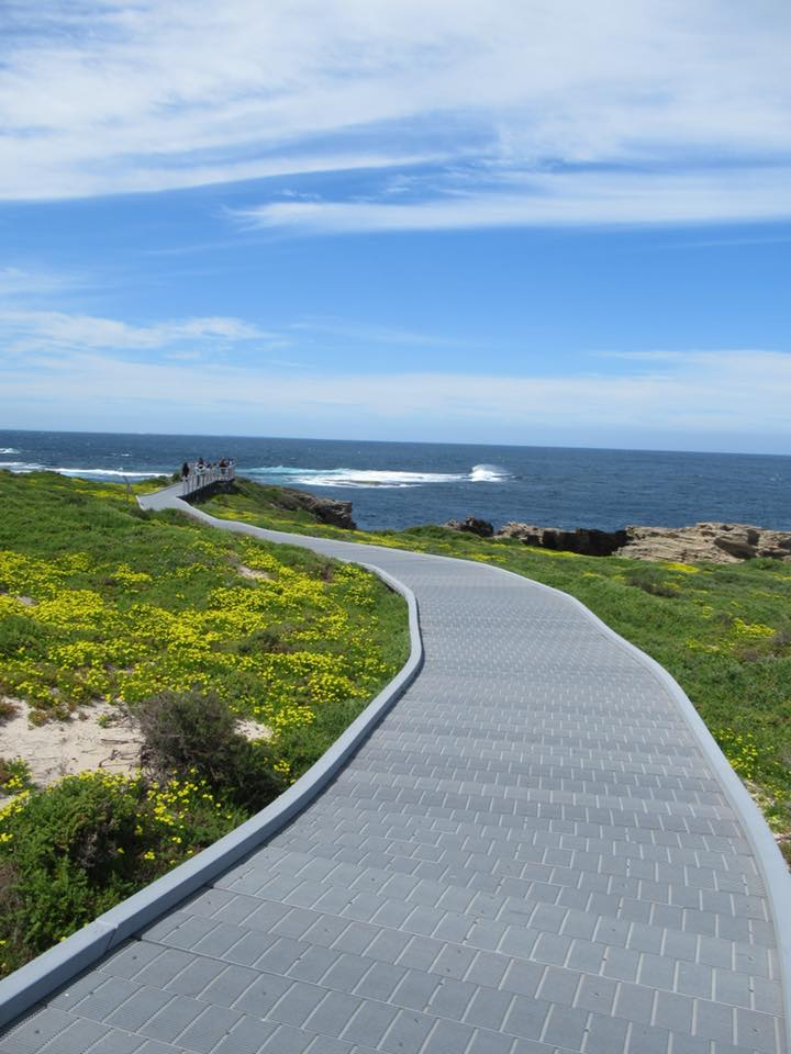 rottnest island boardwalk day trip from perth itinerary photo spots things to see and do