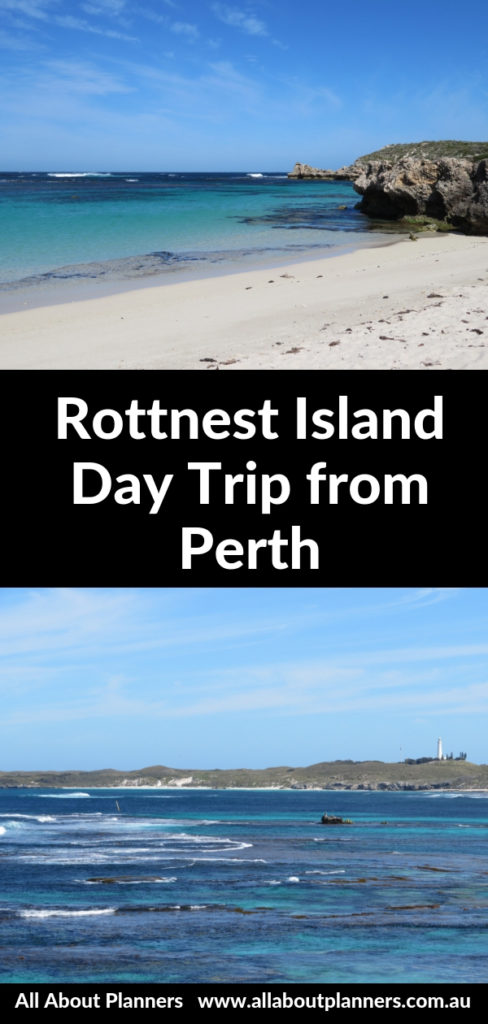 rottnest island day trip from perth itinerary 1 day quokka pristine beaches australia must see and do