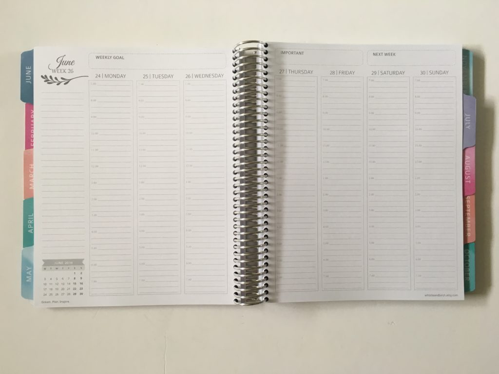 whistle and birch hourly planner review scheduling pros and cons 7am to 7pm vertical cheaper alternative to erin condren custom personalised cover