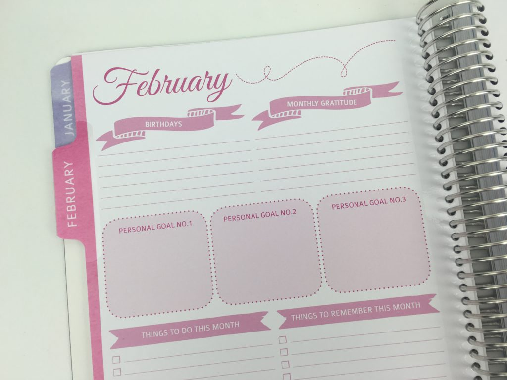 whistle and birch monthly planner dashboard birthdays events goals habit tracker similar to erin condren plum paper australian colorful