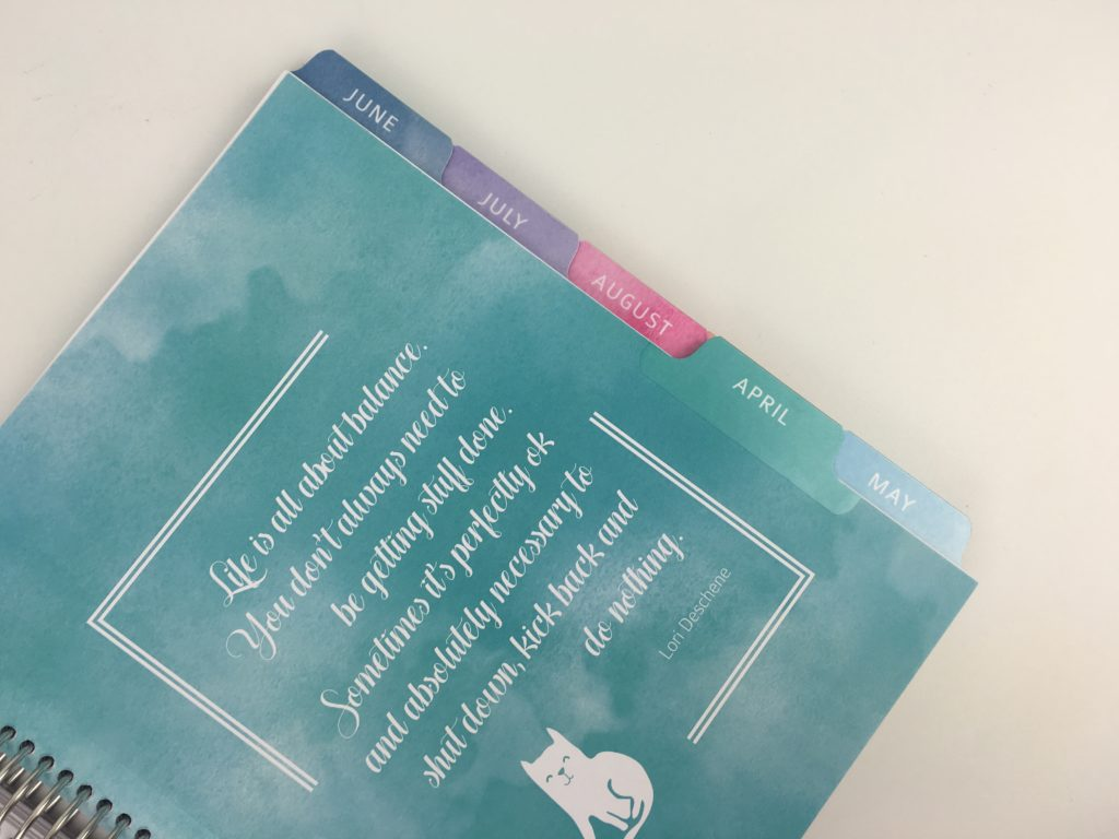 whistle and birch planner review dividers colorful sturdy quality video flipthrough pros and cons similar to erin condren watercolor