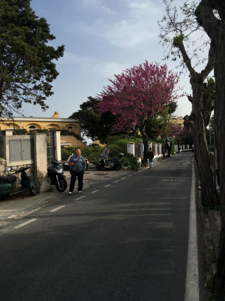 anacapri italy how to get there things to see and do navigating the island