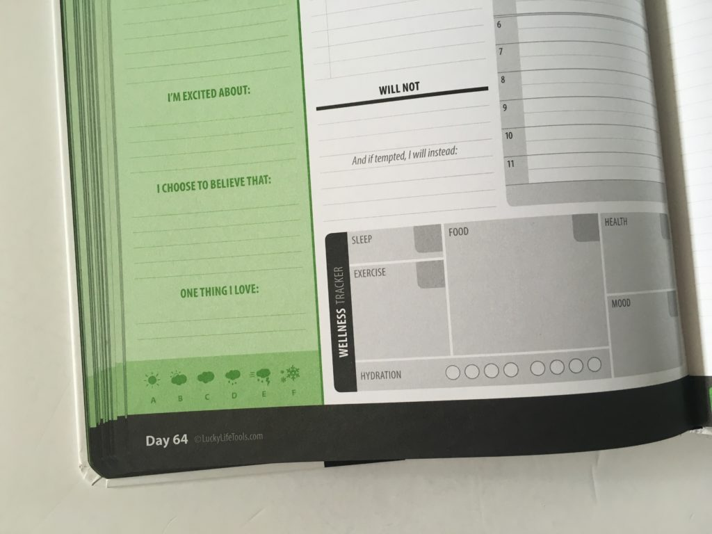 lucky life tools day to a page planner review wellness health hardbound pros and cons video h20