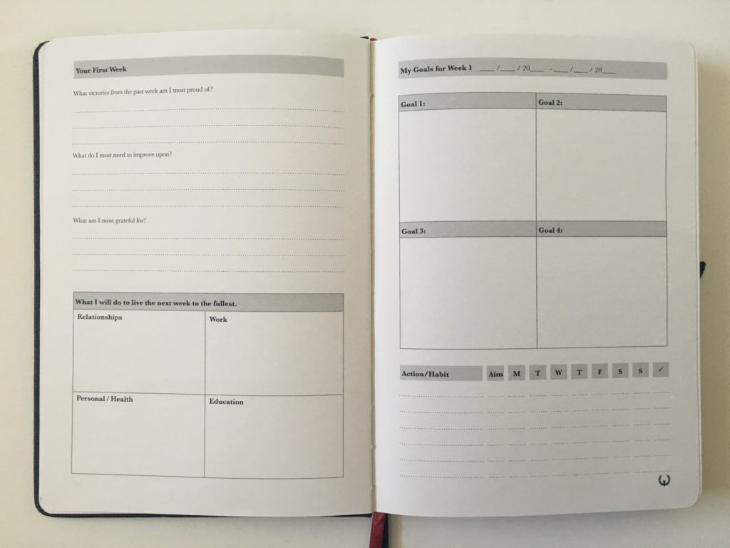 phoenix journal goal planner review 12 week daily weekly review undated month on 2 pages