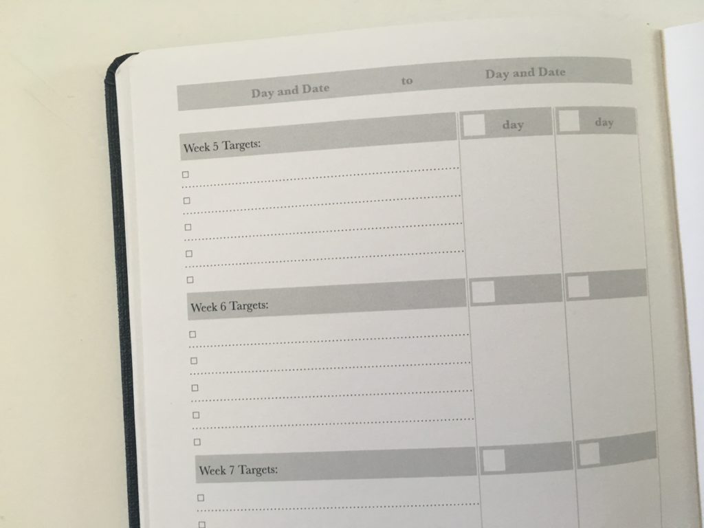 phoenix journal goal planner review 12 week daily weekly review undated month on 2 pages goal overview