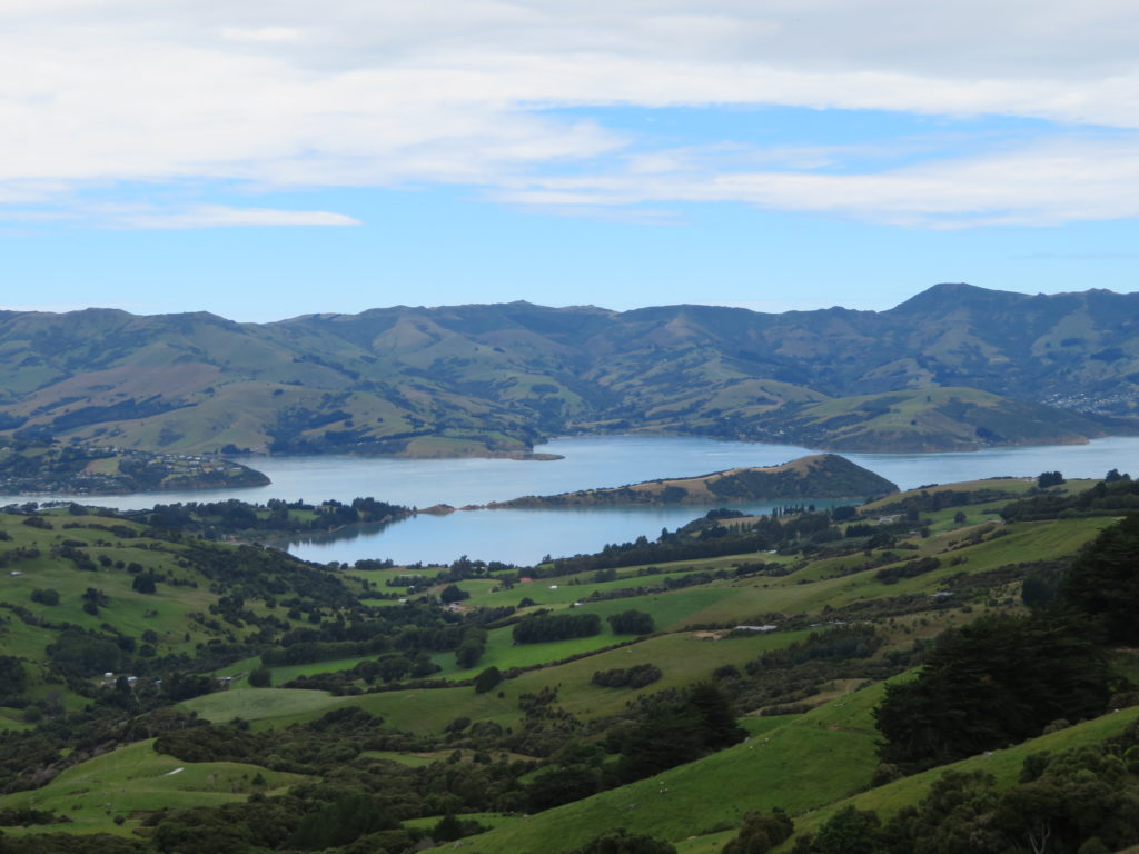 akaroa harbour view from hilltop tavern new zealand south island