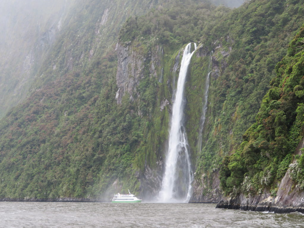 milford sound day trip real journeys review new zealand south island itinerary summer