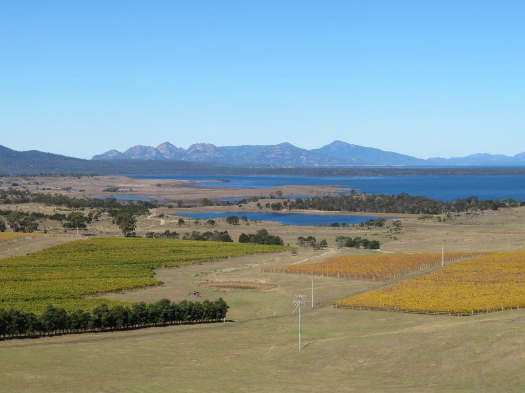 Devil's Corner Cellar Door Lookout Tasmania self drive itinerary things to see and do