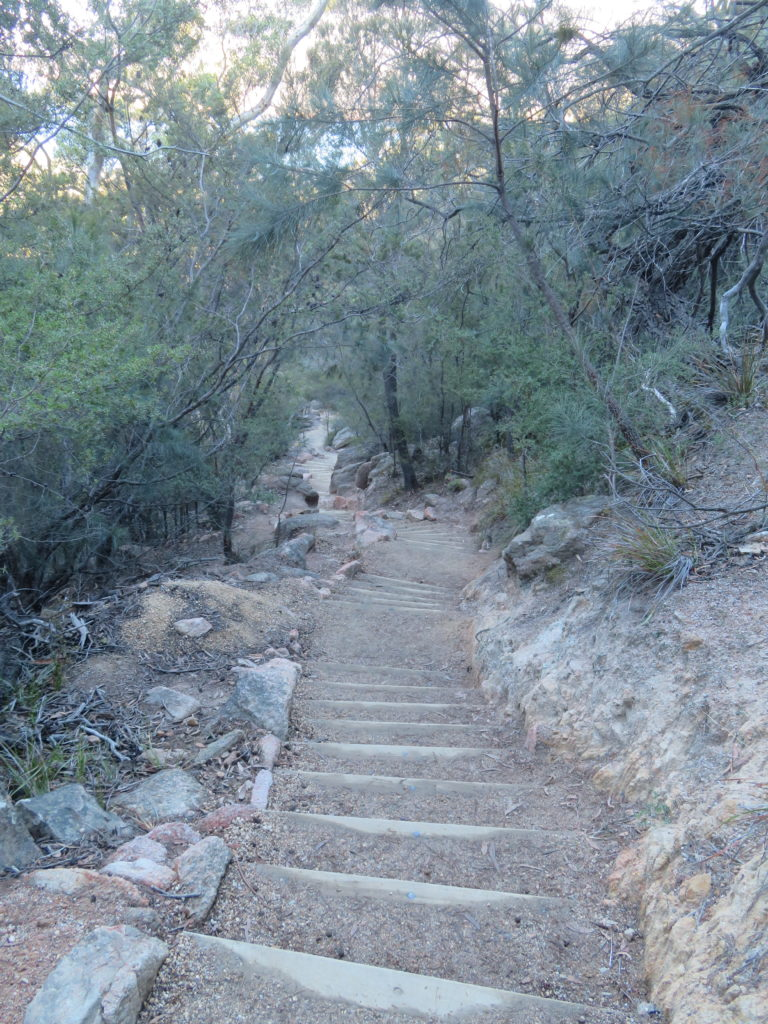wineglass bay steps to the beach walking trail level of difficulty freycinet national park