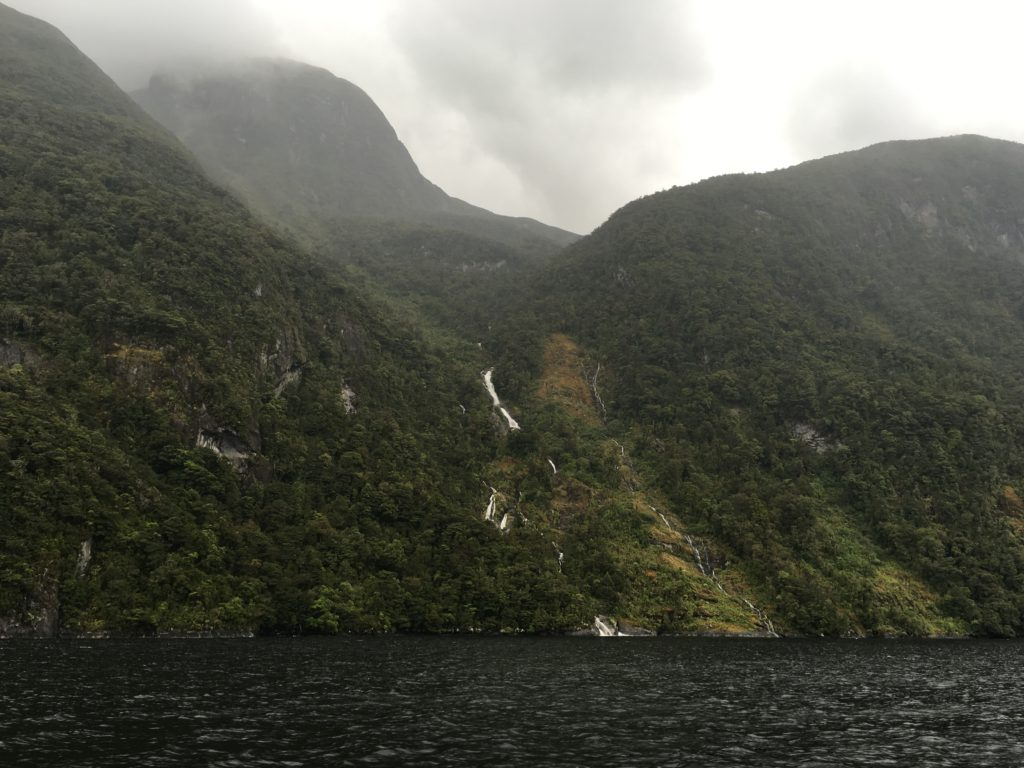 doubtful sound day trip from te anau new zealand south island road trip itinerary real journeys review waterfalls january