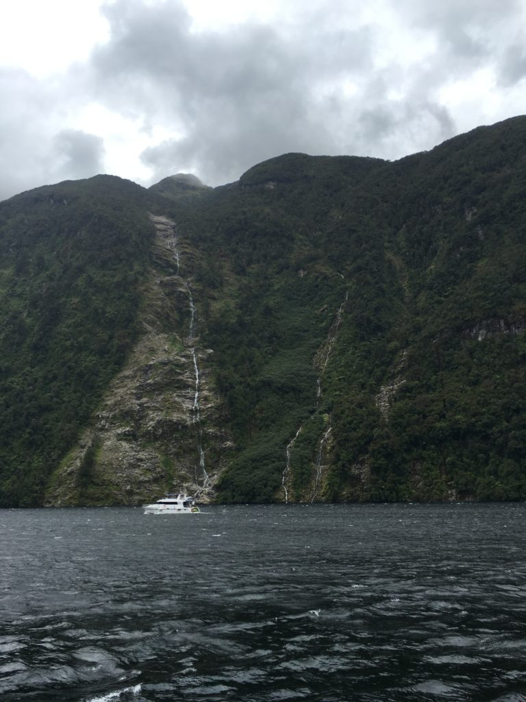 doubtful sound day trip from te anau new zealand south island road trip itinerary real journeys review waterfalls january fjord