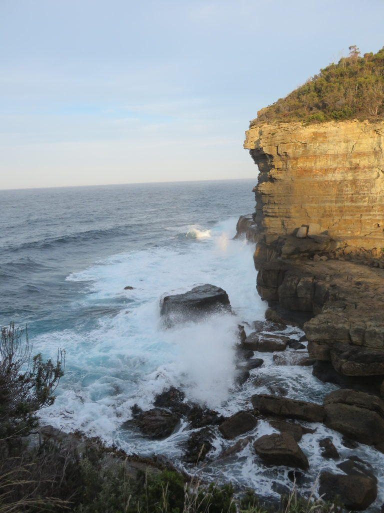 tasmania eagleneck hawk devils kitchen blowhole photo stops on the way to port arthur itinerary