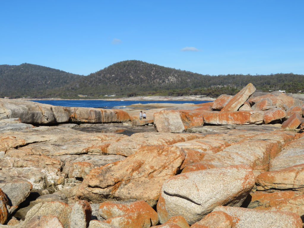 tasmania bicheno blowhole bay of fires national park red rocks