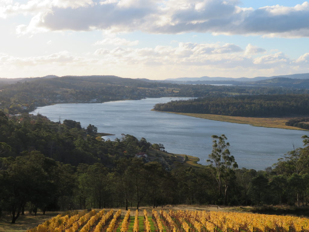 tasmania tamar valley brady's lookout viewpoint autumn winery half day trip from launceston