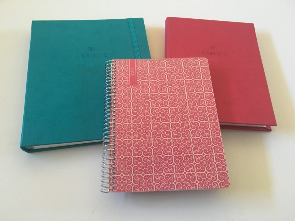 Agendio custom dot grid notebook for bullet journaling (pros, cons & pen testing)
