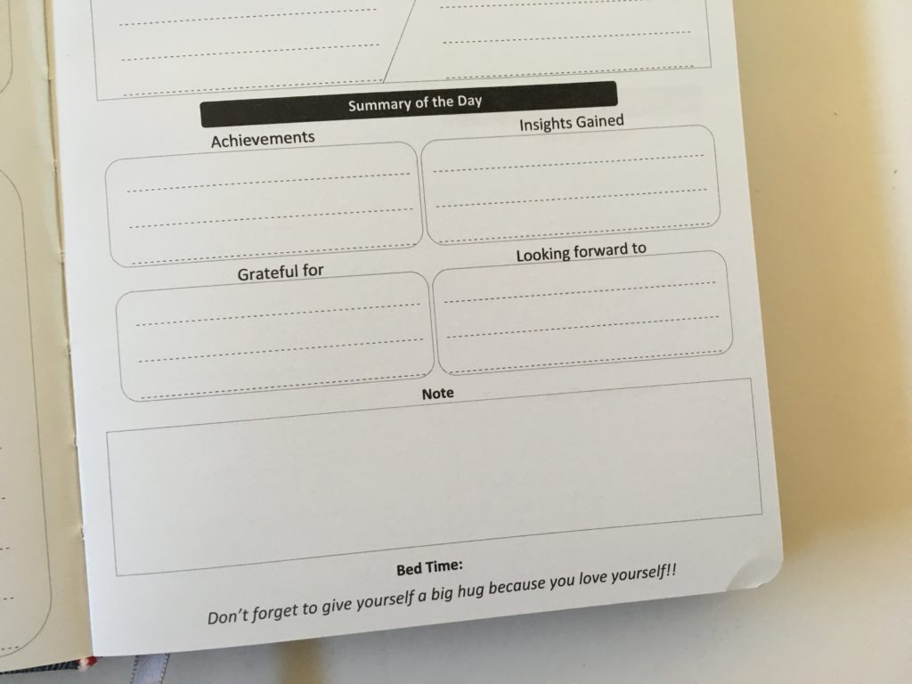penguin planner review pros and cons paper quality bright white a5 page size daily 2 pages per day gratitude health supplements tasks no hourly schedule