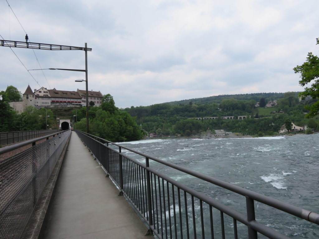 Rhine falls half day trip from zurich things to see and do is it worth a visit