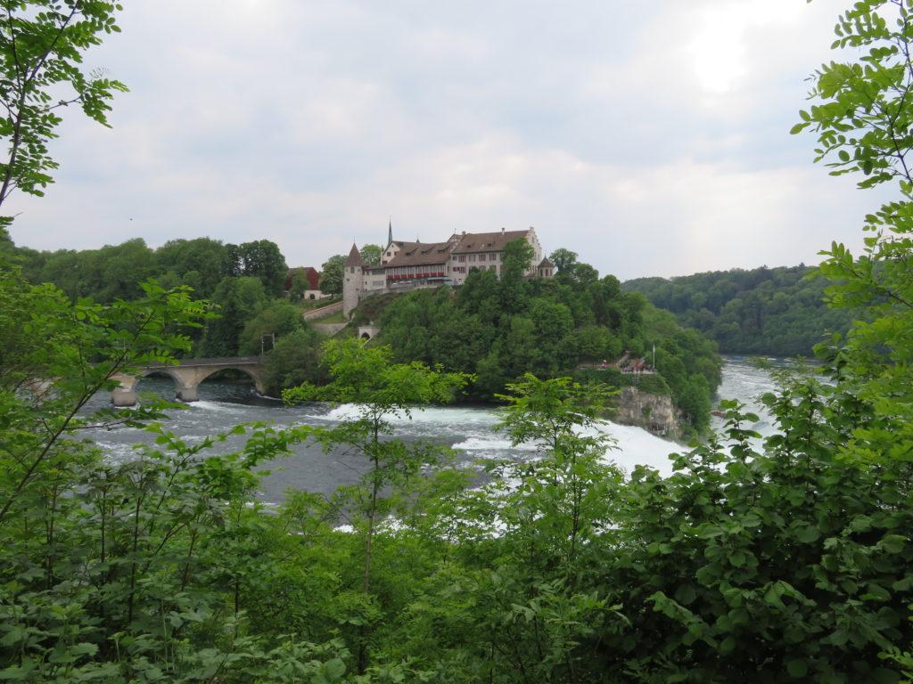 Rhine falls viewpoints best zurich day trips rhine falls