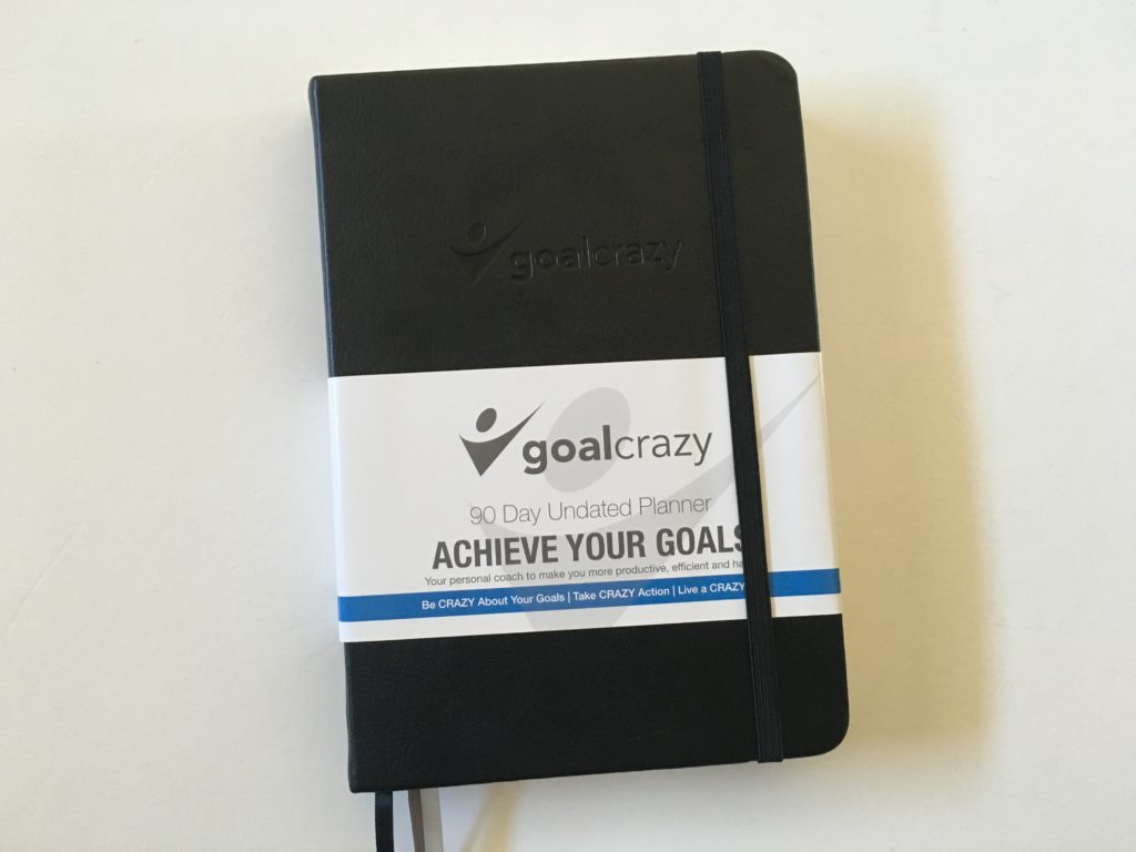 goal crazy planner review daily and weekly monthly 90 days undated pros and cons video flipthrough