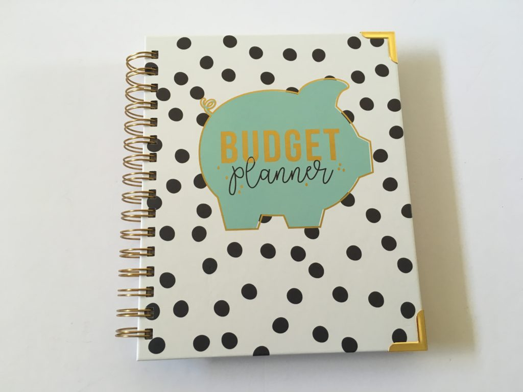 carpe diem budget planner review pros and cons hardcover monthly rainbow colorful cheap affordable