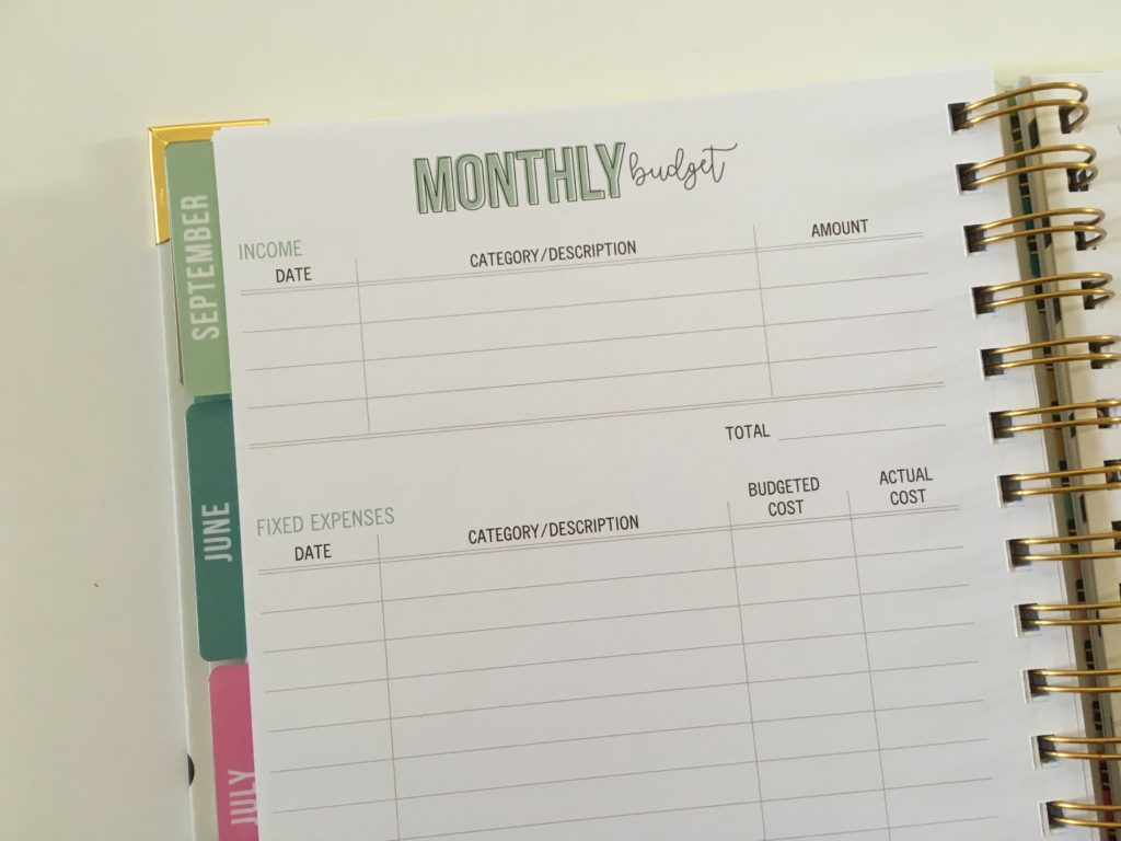 carpe diem monthly budget planner review