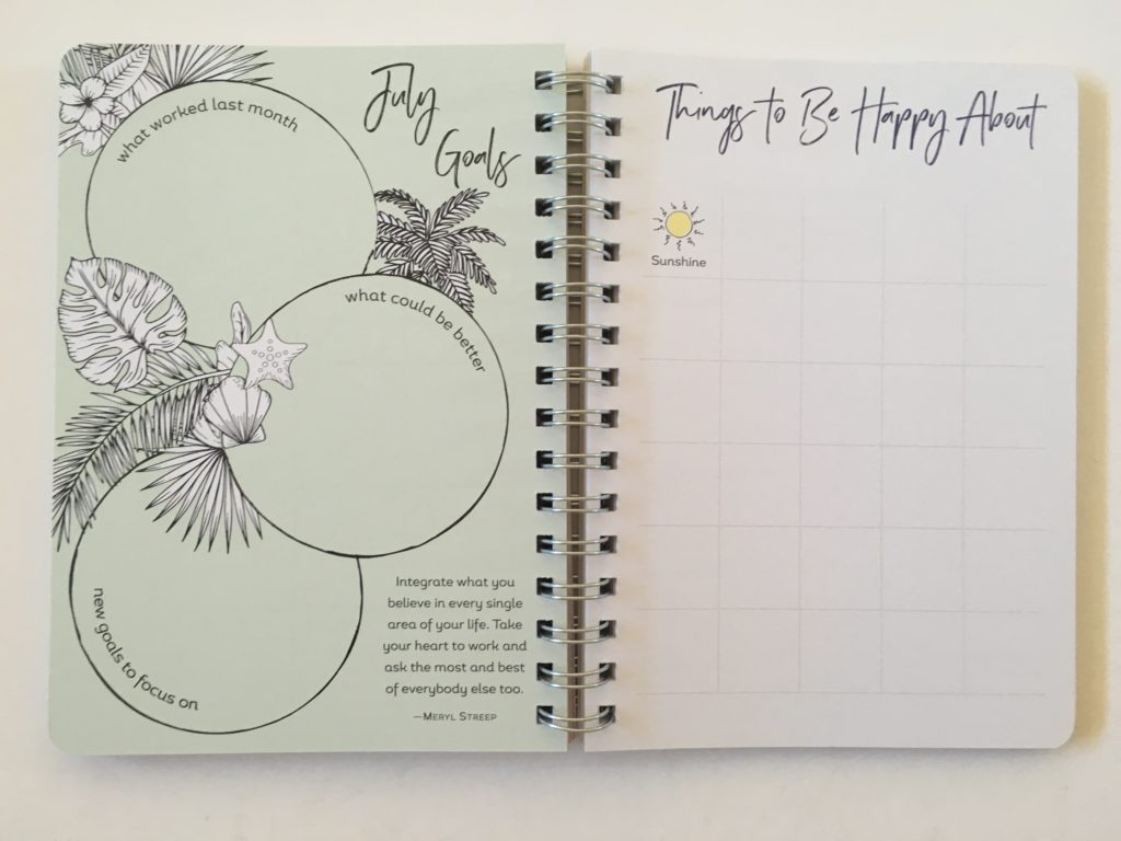 amy knapp's very busy organizer weekly planner review gratitude wellbeing
