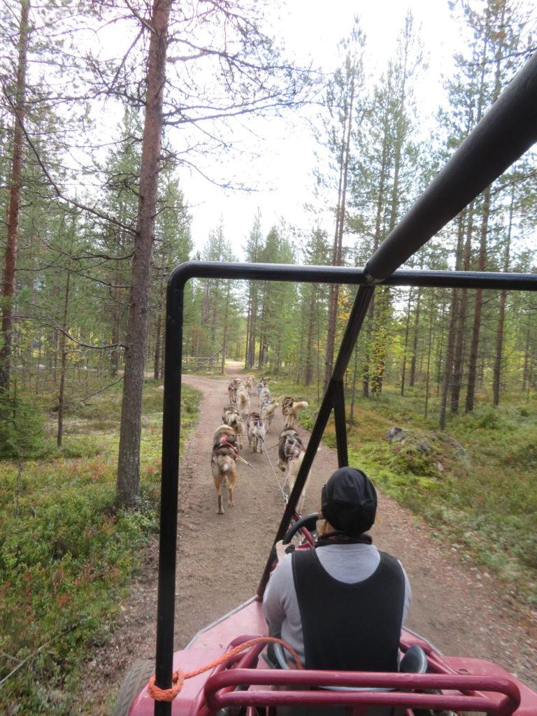riding an atv in northern finland husky farm santa claus village rovaniemi northern finland lapland