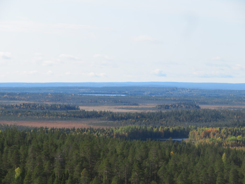 finland day trip viewpoint lookout hiking trail finnish forest walking trip