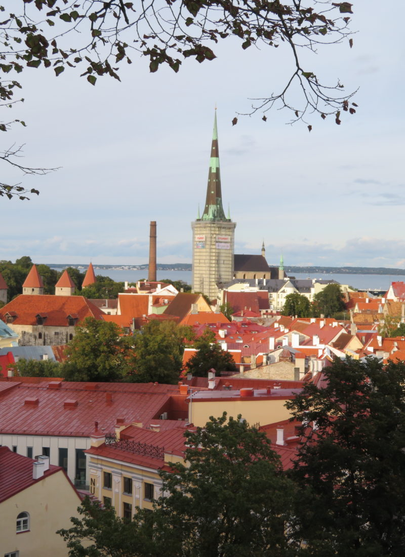 Tallin's best viewpoints
