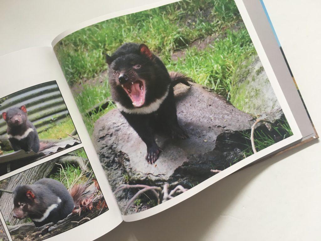 blurb photobook tasmania