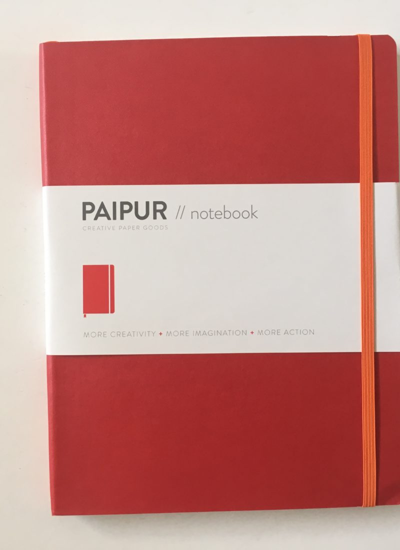 PAIPUR Dot Grid & Lined Hybrid Notebook Review (Including Pen Test)