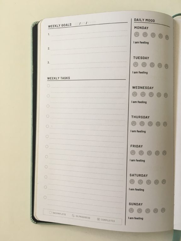 the kind friend journal weekly planner alternative to traditional layout dot grid bright white pages mood tracker checklist weekly habit tracker review questions colorful video flipthrough_07