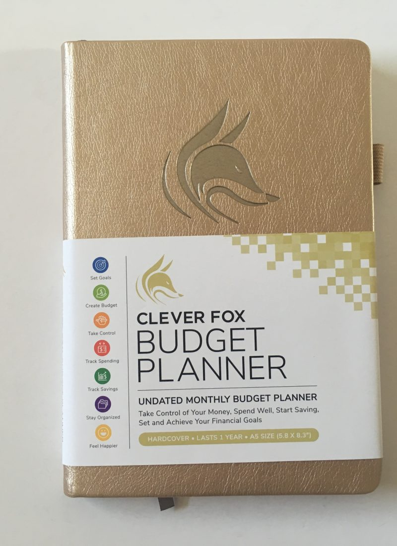 Clever fox budget planner review monthly pre-filled goals spending expenses tracker debt savings goals affordable minimalist video flipthrough pros and cons pen testing_23