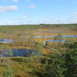 Day trip to Lahemaa National Park (from Tallinn, Estonia)